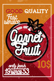Color vintage fruit banner Royalty Free Stock Image