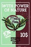 Color vintage medical plants herbs banner Stock Image