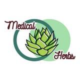Color vintage medical plants herbs emblem Royalty Free Stock Photos