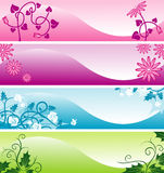 Color web floral banners Royalty Free Stock Photos