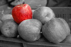 Color and white and black apples Royalty Free Stock Images