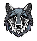 Color Wolf head. Vector color Wolf head on white background Royalty Free Stock Image