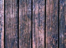 Color wood background. Brown wood texture with vertical lines. Stock Image