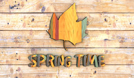 Color wooden board with spring Stock Images