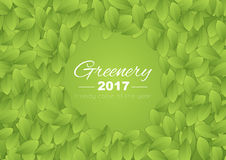 Color of the year 2017 Greenery abstract background Royalty Free Stock Photography
