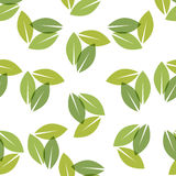Color of the year 2017. Greenery beautiful trendy seamless pattern. Vector illustration Royalty Free Stock Image