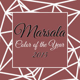 Color of the year 2015 infographic. Color of the year 2015 with name Marsala Stock Images