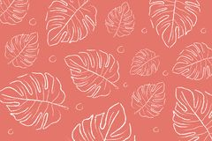 Color of the year 2019 Living coral . COY Livingcoral. Tropical leaves background royalty free stock photo