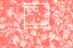 Color of the year 2019 Living Coral. Floral natural pattern of foliage. Popular trend palette for design illustrations. Fabrics, fashion, images. Tinted stock photography