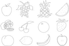 Color Your Own Fruit royalty free stock image