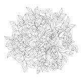 Coloração Antistress das flores e das folhas Imagem de Stock Royalty Free