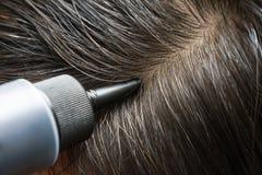 Coloração de cabelo Imagem de Stock Royalty Free