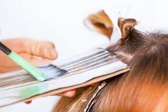 Coloração de cabelo imagens de stock royalty free
