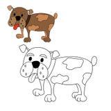Coloração do buldogue do cão Fotografia de Stock