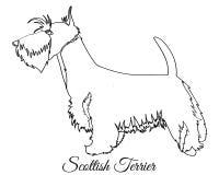 Coloração escocesa do cão do terrier ilustração do vetor