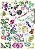 Colora a coleção dos elementos da flor Fotografia de Stock Royalty Free
