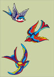 Colora gli uccelli in mosca Fotografie Stock Libere da Diritti