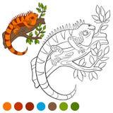 Colora-me: iguana A iguana alaranjada bonito senta-se na árvore Imagem de Stock Royalty Free