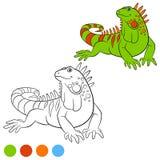 Colora-me: iguana Sorrisos verdes bonitos da iguana Imagens de Stock