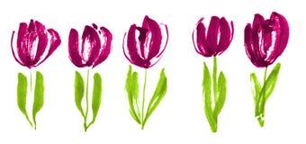 Colora o esboço moderno da flor da tulipa do conceito da pintura Fotos de Stock Royalty Free