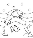 Colorable fishes Stock Photo