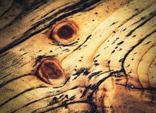 Coloración del detalle de los revestimientos de madera de la pared fotos de archivo libres de regalías