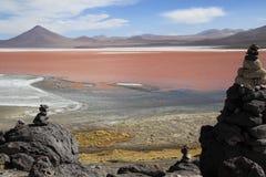 colorada拉古纳 01 06 2000年玻利维亚de distance女性湖层放置孤立稀薄在撒拉尔盐旅行家uyuni走的水 库存照片