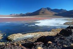 Colorada di Laguna in deserto boliviano Fotografia Stock