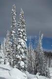 Colorado Stock Photography