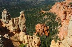 Colorado 3 wiosna Zdjęcia Stock
