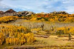 Colorado Autumn Beauty cênico Imagem de Stock Royalty Free