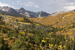 Colorado Autumn. Autumn colors of the San Juan Mountains in Southwest Colorado Stock Images