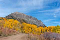 Colorado Autumn Stock Images