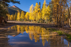 Colorado Autumn Landscape Reflection Royalty Free Stock Images