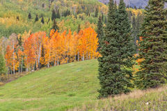 Colorado Autumn Landscape Royalty Free Stock Image