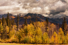 Colorado Royalty Free Stock Images