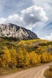 Colorado Autumn Scenery Royalty-vrije Stock Afbeelding