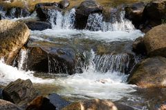 Colorado Autumn Scenery - Hoge Bergstroom stock foto's