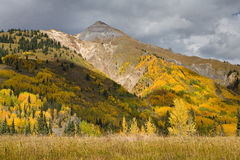 Colorado Autumn Scenic Beauty Fotos de Stock