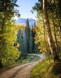 Colorado Autumn Scenic Beauty stockfoto