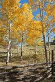 Colorado Autumn Scenic Beauty lizenzfreie stockfotografie