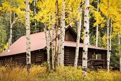 Colorado Autumn Scenic Beauty lizenzfreie stockbilder