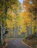 Colorado Autumn Scenic Beauty lizenzfreies stockfoto