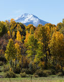 Colorado Autumn Scenic Beauty. Autumn colors create a unique scenic beauty in the Rocky Mountains of Colorado Royalty Free Stock Photos