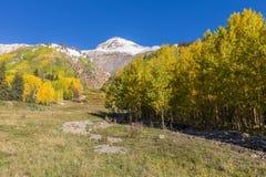 Colorado Autumn Scenic Landscape imagem de stock royalty free