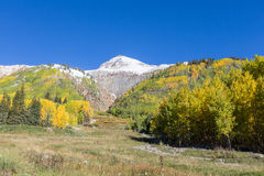 Colorado Autumn Stock Photos