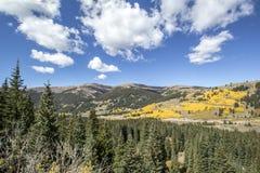 Colorado Autumn Valley Stockfotografie