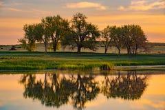 Colorado-Bäume u. -see bei Sonnenaufgang Stockbild