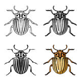 Colorado beetle icon in cartoon style isolated on white background. Insects symbol stock vector illustration. Royalty Free Stock Image
