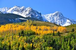 Colorado-Berge im Fall Stockfoto